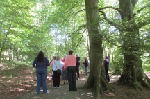 31-05-17 06 Darren talking to the group in the woods LOW RES